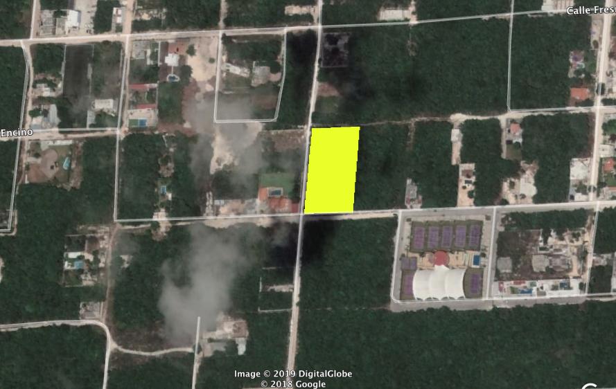 Terreno Venta en Cancun Alamos II 5000m2